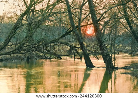 Small river in spring - stock photo