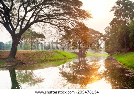 Small river in the beautiful morning sunlight. Thailand