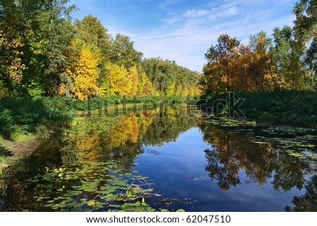 Small river in the forest at golden autumn - stock photo