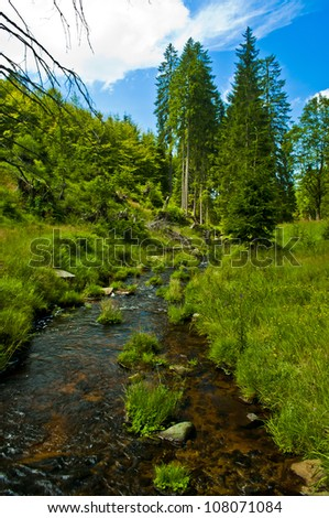small river through green forest - stock photo