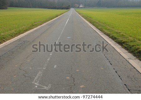 small road between wheat fields