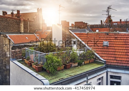 small rooftop garden with lots of potted plants on a sunny evening - stock photo