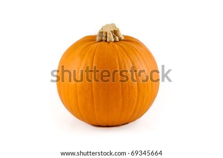 Small round pumpkin with a white background