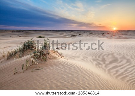 Small sand barkhans with grass at the sunrise. Desert Barkhan Big Brother, Astrakhan Region, Russia. - stock photo