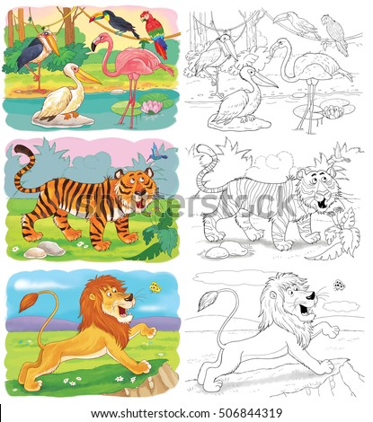 Small Set Of Coloring Pages With Cute African Animals. Lion, Tiger, Pelican,