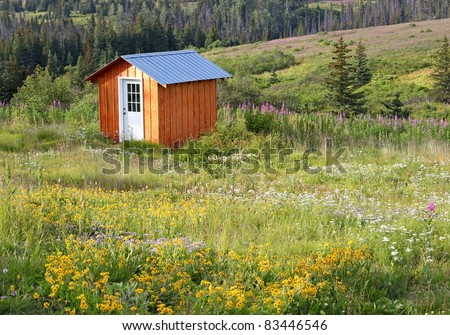 Small shed in a meadow full of wildflowers in summer