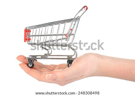 Small shopping cart in female hand isolated on white - stock photo