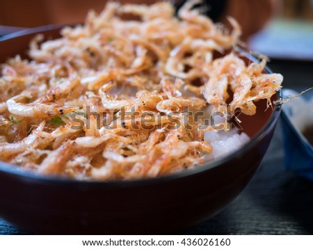 Small shrimp bowl of rice topped with Kakiage Tempura