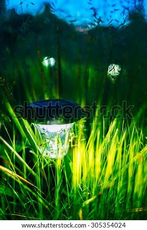 Small Solar Garden Light, Lanterns In Flower Bed. Garden Design. Solar Powered Lamp - stock photo