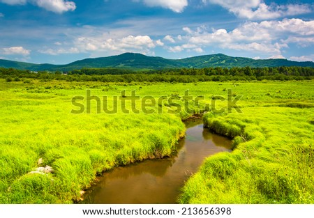 Small stream and distant mountains at Canaan Valley State Park, West Virginia. - stock photo