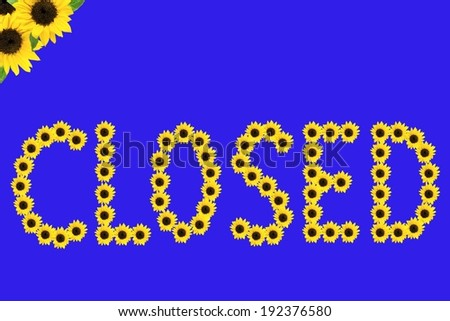Small sunflowers arranged to spell out a word. - stock photo