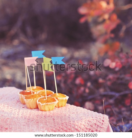 Small sweet muffins with decoration colorful flags on the table outdoors