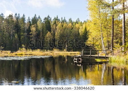 Small swimming bridge in a lake surrounded by colorful autumn forest