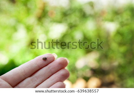 Small tick on human finger