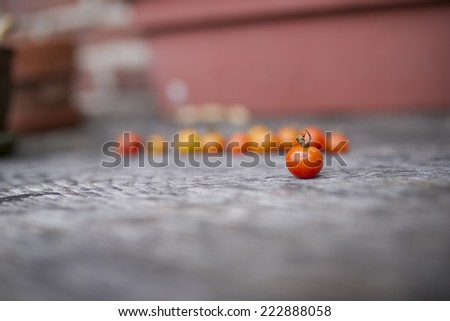 Small Tomato - stock photo