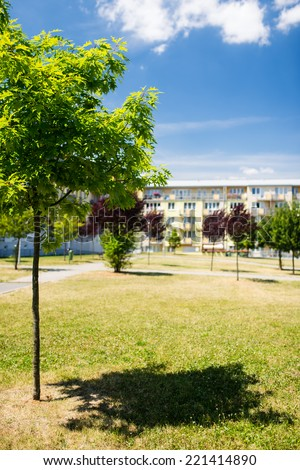 Small tree in green area in front of newly built block of flats - stock photo