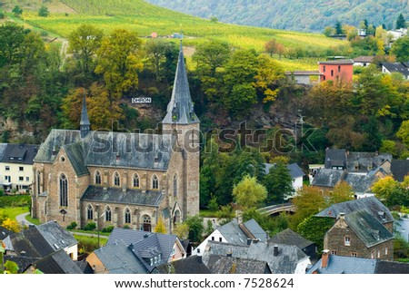 small village and vineyards along the mosel river in germany