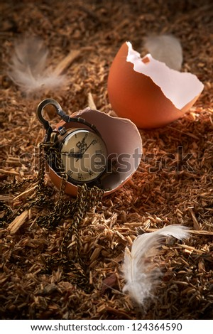 Small vintage clock in broken egg laying on sawdust and feathers - stock photo