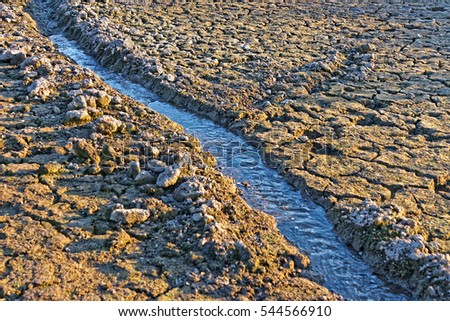 Small water stream flowing in the channel on dried cracked earth in hot summertime