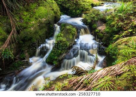 Small waterfall in jungle - stock photo