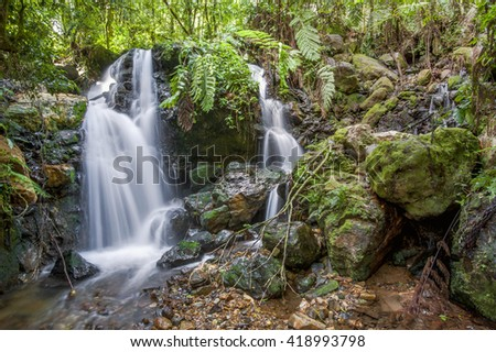 Small waterfall in the dark forest. Waterfalls and vegetation inside the Bwindi Impenetrable Forest in Uganda (Africa) - stock photo