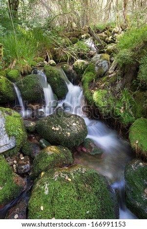 Small waterfall of a river in a forest located in Asturias (Spain). Long Exposure Photography