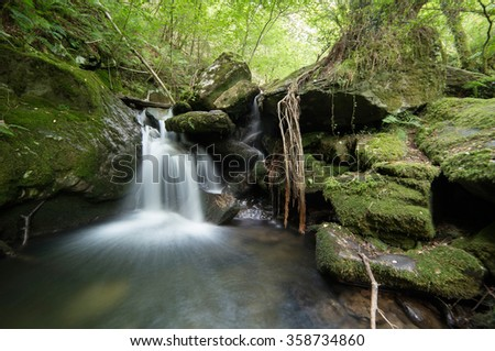 """Small watterfall in Sesin river, located in the natural park of """"fragas do Eume"""" - stock photo"""