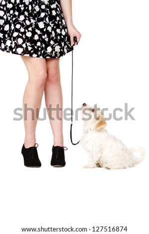 Small white puppy with a black lead sat next to a woman's legs looking up at her isolated on a white background - stock photo