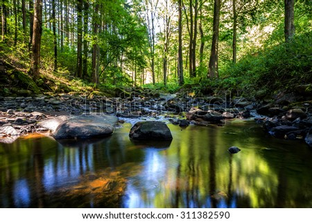 small wild river brtnicka in Bohemian forest on Vysocina - stock photo