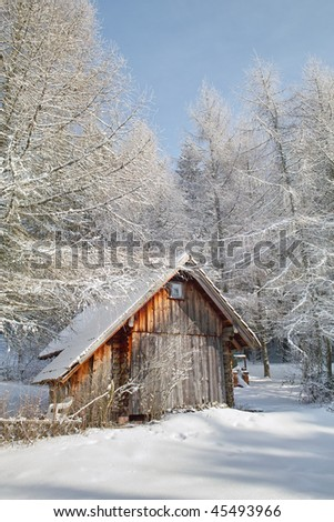 small wood cabin in winter larch forest