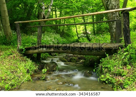 Small wooden bridge over the creek