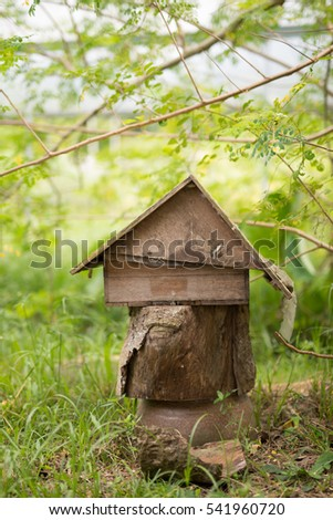 small wooden house at outdoor greenery background
