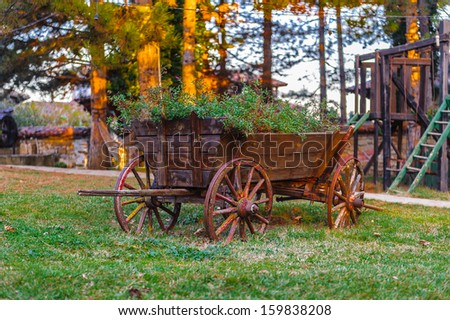 Small wooden wheel carriage with the plants inside on the grass in the village