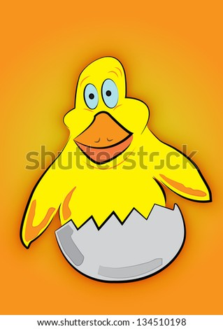 Small yellow chicken - stock photo