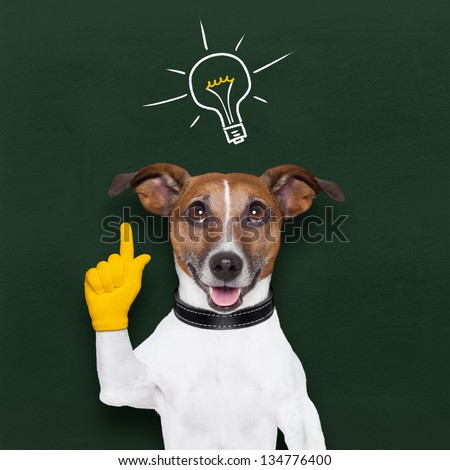 smart and clever dog with a light bulb on blackboard - stock photo