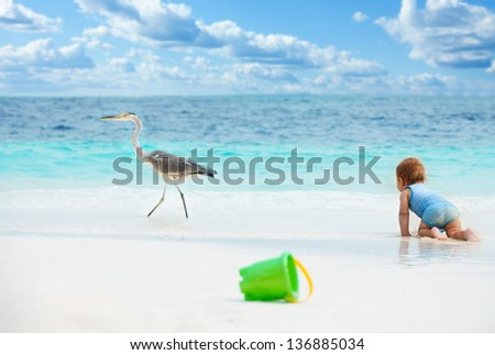 Smart baby crawling chasing the big bird on the beach with toys on foreground - stock photo