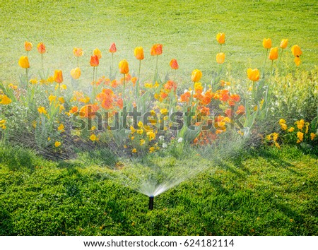 Smart garden activated with full automatic sprinkler irrigation system working early in the morning in green park watering lawn and colourful flowers tulips narcissus and other types of spring flowers