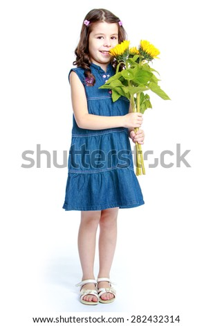 Smart girl  sitting at the table  learning Montessori material girl in denim dress  hugs bouquet of sunflowers- isolated on white background - stock photo