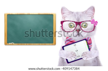 Smart handsome cat with notepad. Funny animals. Trendy cat dressed in beautiful clothes - stock photo