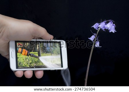 smart phone irrigate the garden with water to obtain plants lush, green - stock photo
