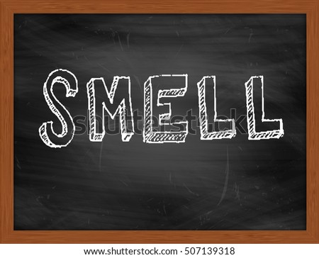SMELL hand writing chalk text on black chalkboard