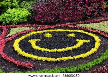 Smiley face garden - stock photo
