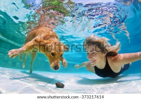 Smiley woman playing with fun and training golden retriever puppy in swimming pool - jump and dive underwater to retrieve stone. Active games with family pets and popular dog breeds like a companion. - stock photo