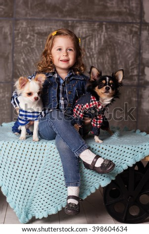 Smiling baby girl is sitting with chuhuahua dogs - stock photo