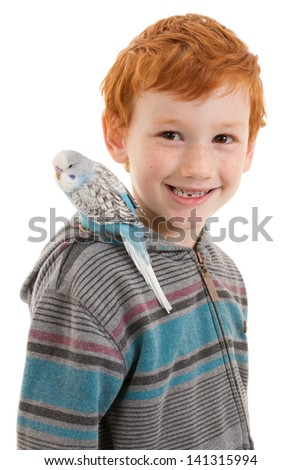 Smiling boy with pet bird budgerigar on shoulder. Isolated on white.