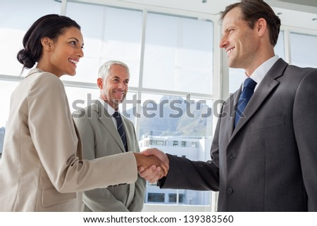 Smiling business people shaking hands with smiling colleague them on the background - stock photo