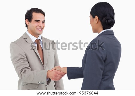 Smiling businessman shaking hand of business partner against a white background