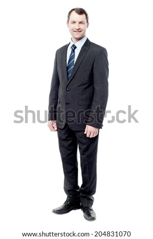 Smiling cheerful middle aged business man posing - stock photo