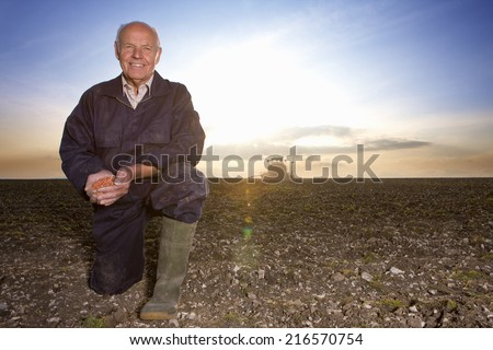 Smiling farmer cupping wheat seed in ploughed field with tractor in background - stock photo