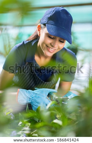 smiling female gardener working in greenhouse - stock photo